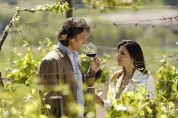 Couple Tasting in field