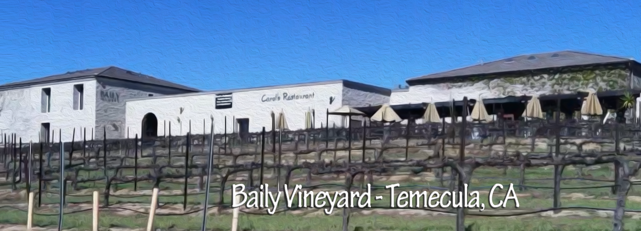 Baily Vineyard & Winery, view from road