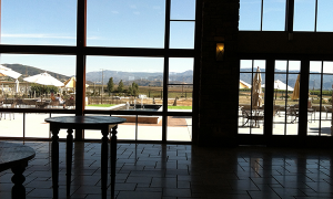 Monte De Oro Tasting Room Window View