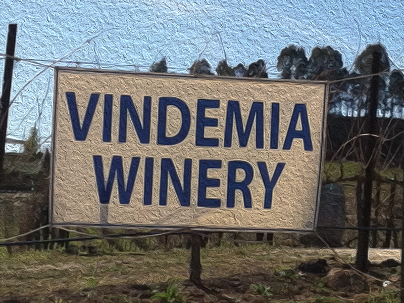 Vindemia Winery