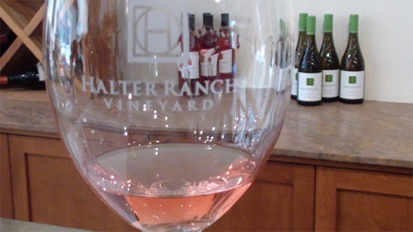 Halter Ranch Wine Glass
