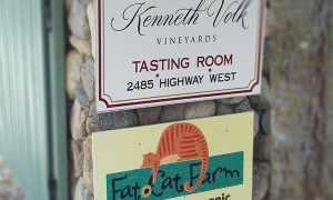 Kenneth Volk's old Paso tasting room