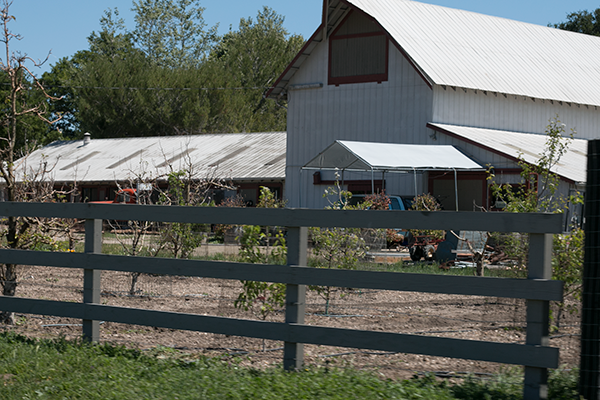 Buttonwood Farm