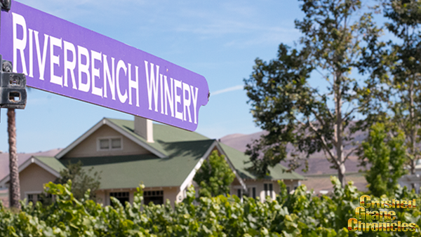 Riverbench Vineyard