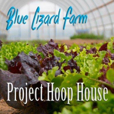Blue Lizard Indiegogo